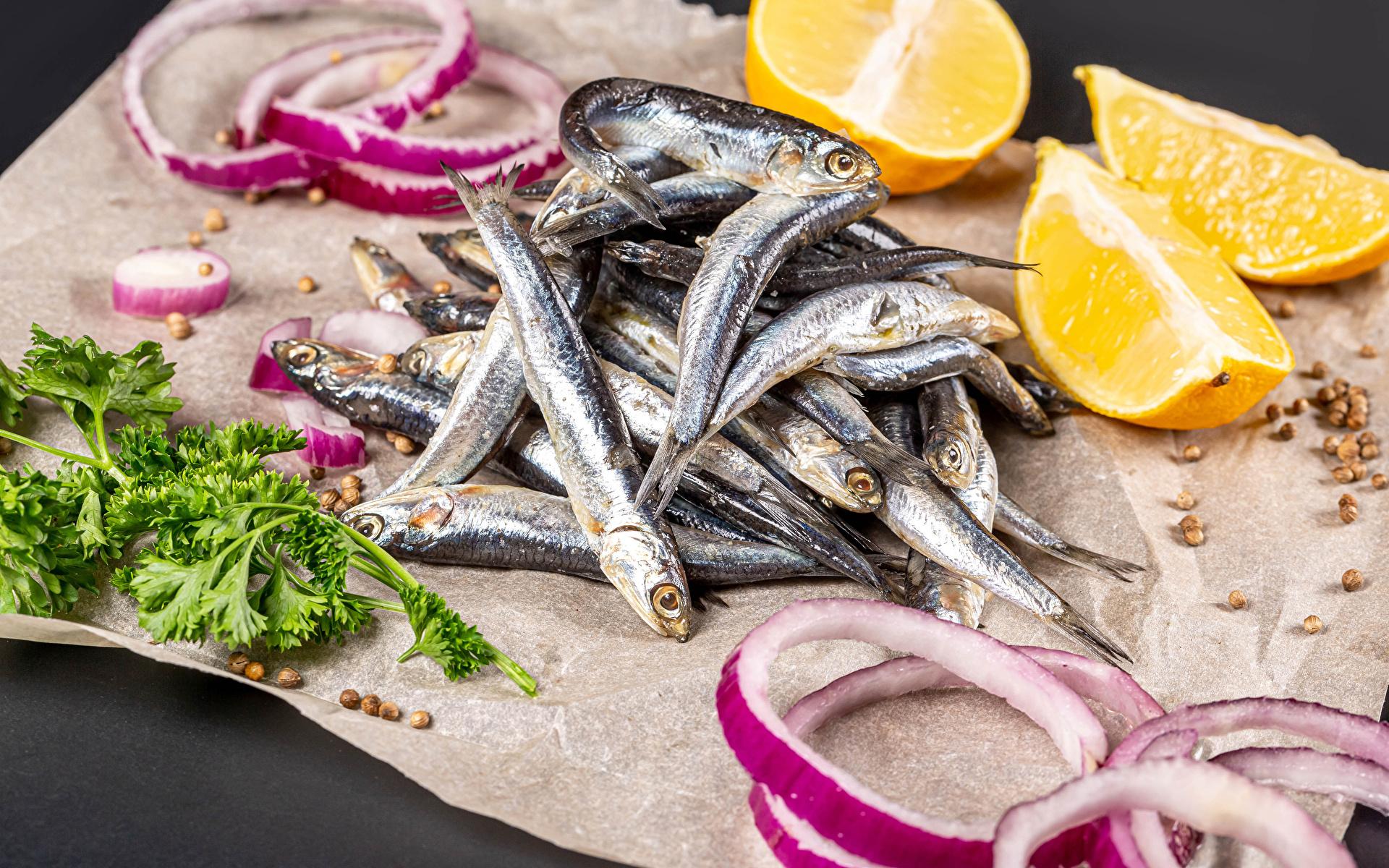 Фотография Апельсин Лук репчатый Рыба Еда 1920x1200 Пища Продукты питания