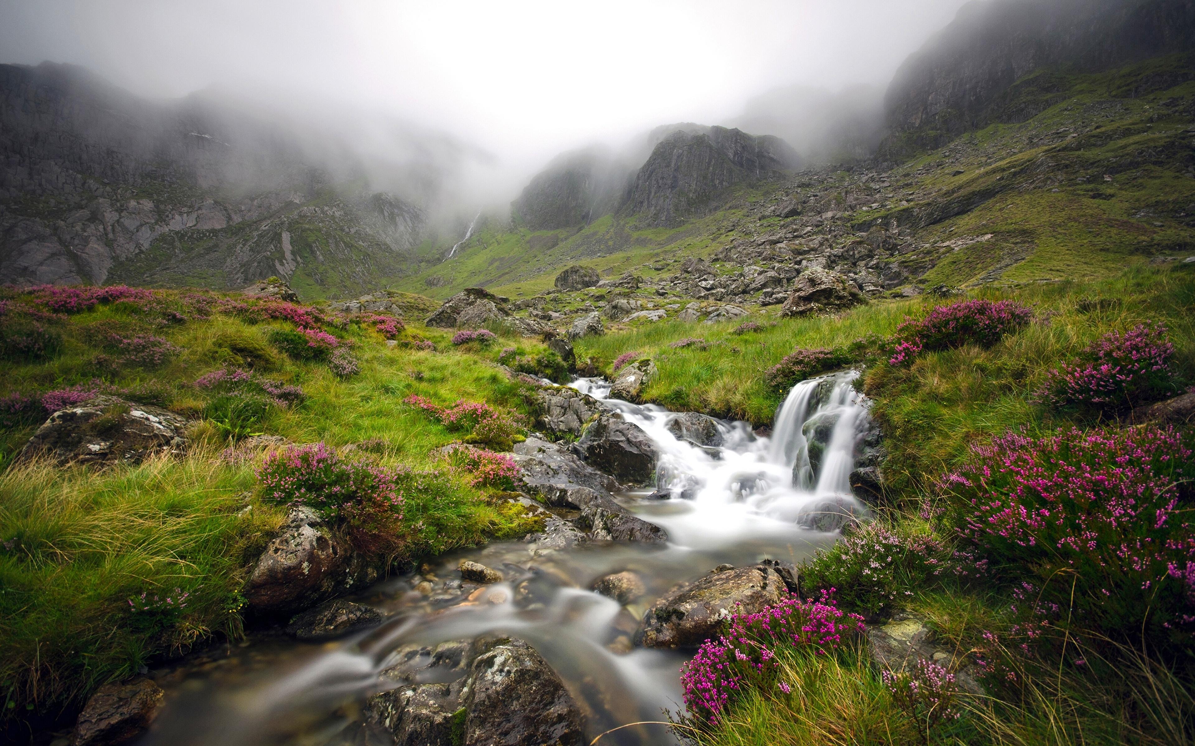 природа река камни трава Сноудон гора бесплатно