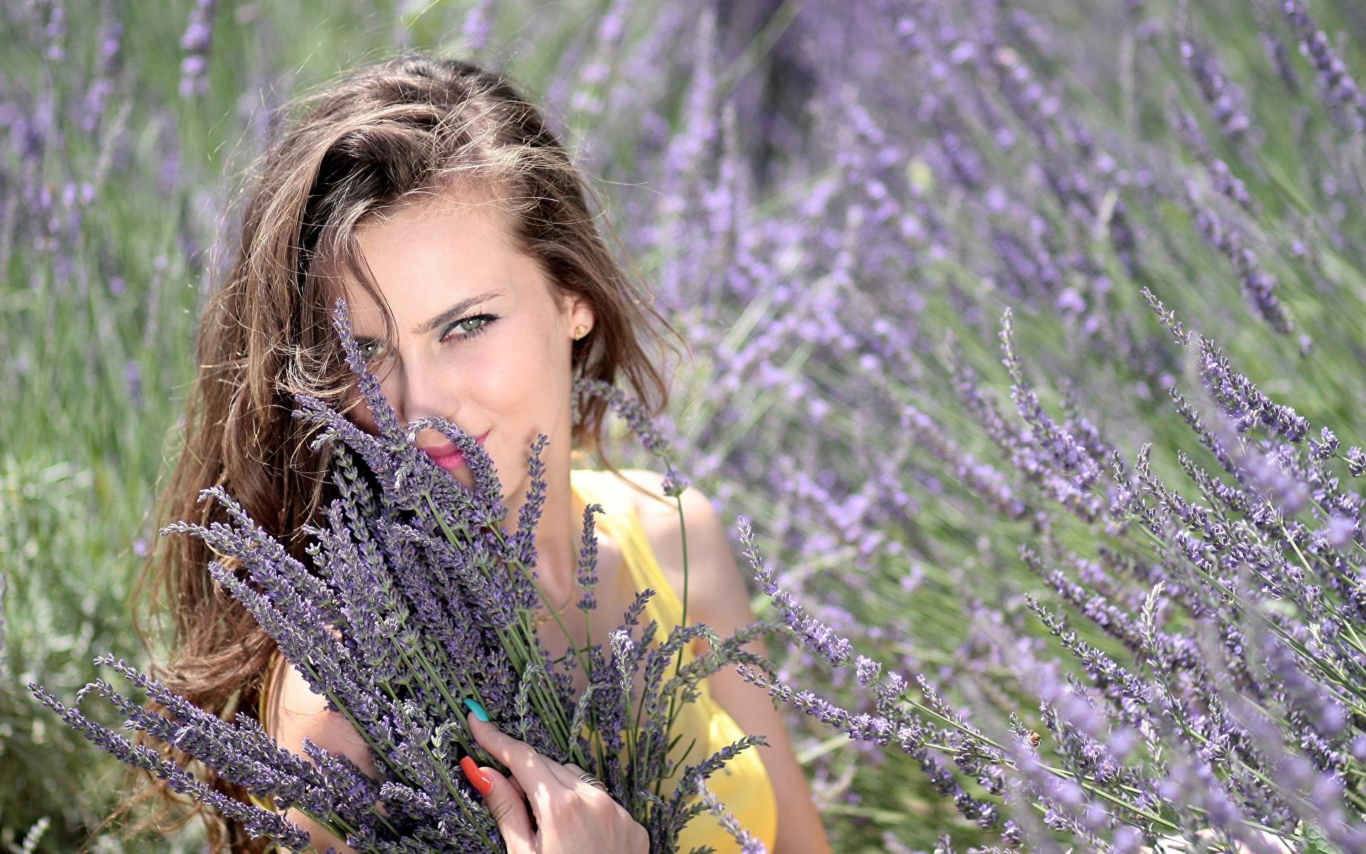 Фото Шатенка Маникюр Улыбка Красивые Девушки Лаванда Взгляд 1920x1200 смотрит