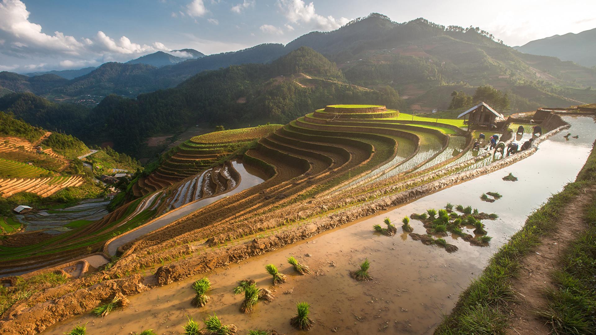 Фотография Вьетнам Mu Cang Chai гора Природа Поля 1920x1080 Горы