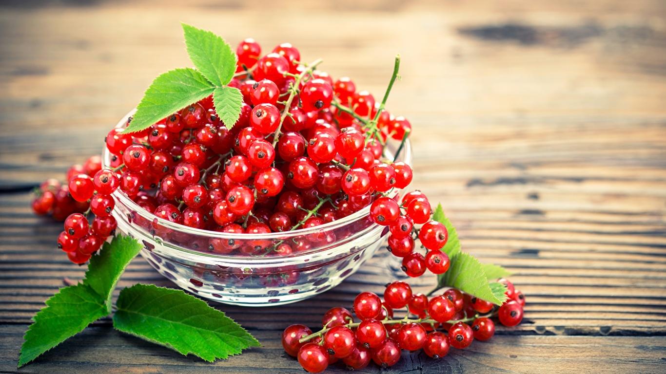 Картинки красных Миска Смородина Еда 1366x768 красная красные Красный Пища Продукты питания