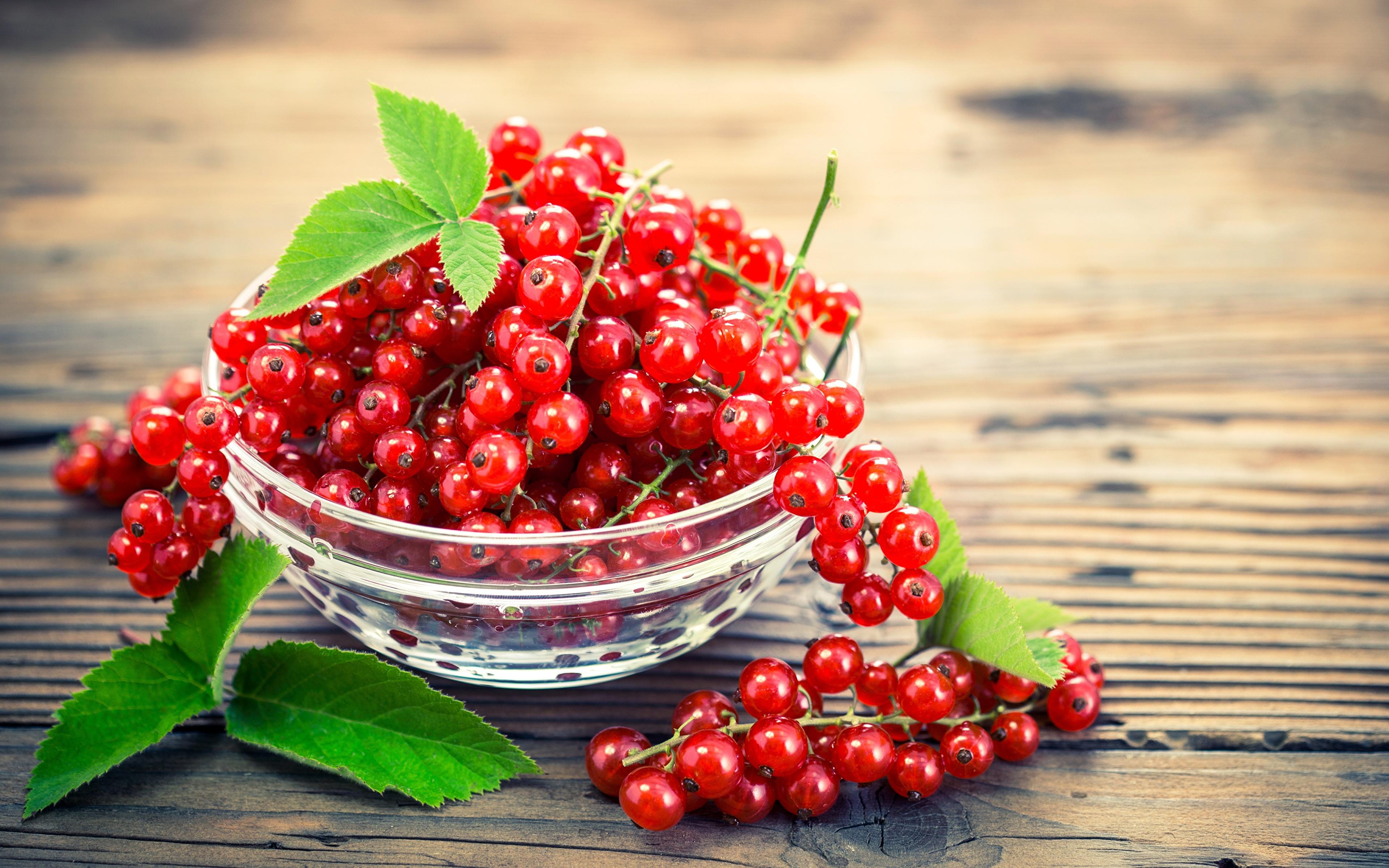 Картинки красных Миска Смородина Еда 3840x2400 красная красные Красный Пища Продукты питания