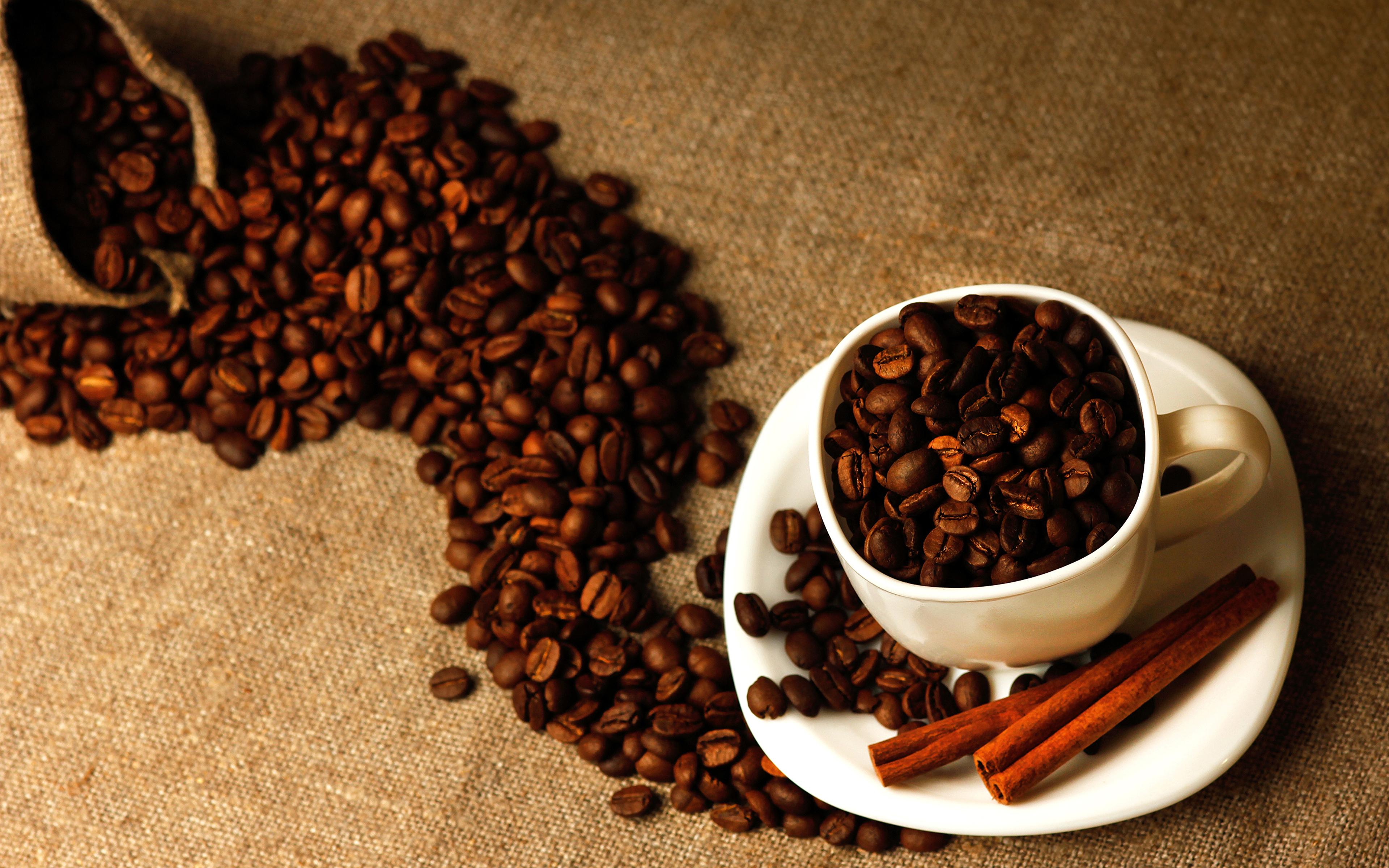 кофе зерна чашка coffee grain Cup скачать