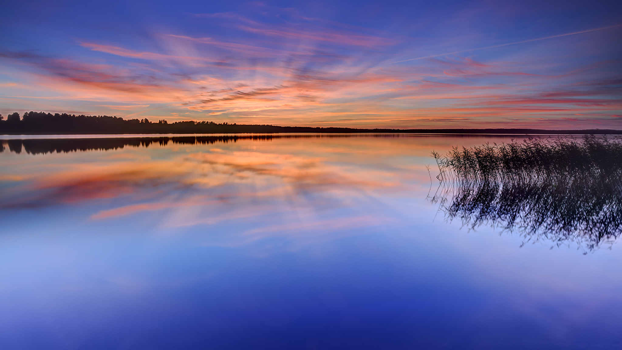 природа деревья небо озеро трава вода без смс