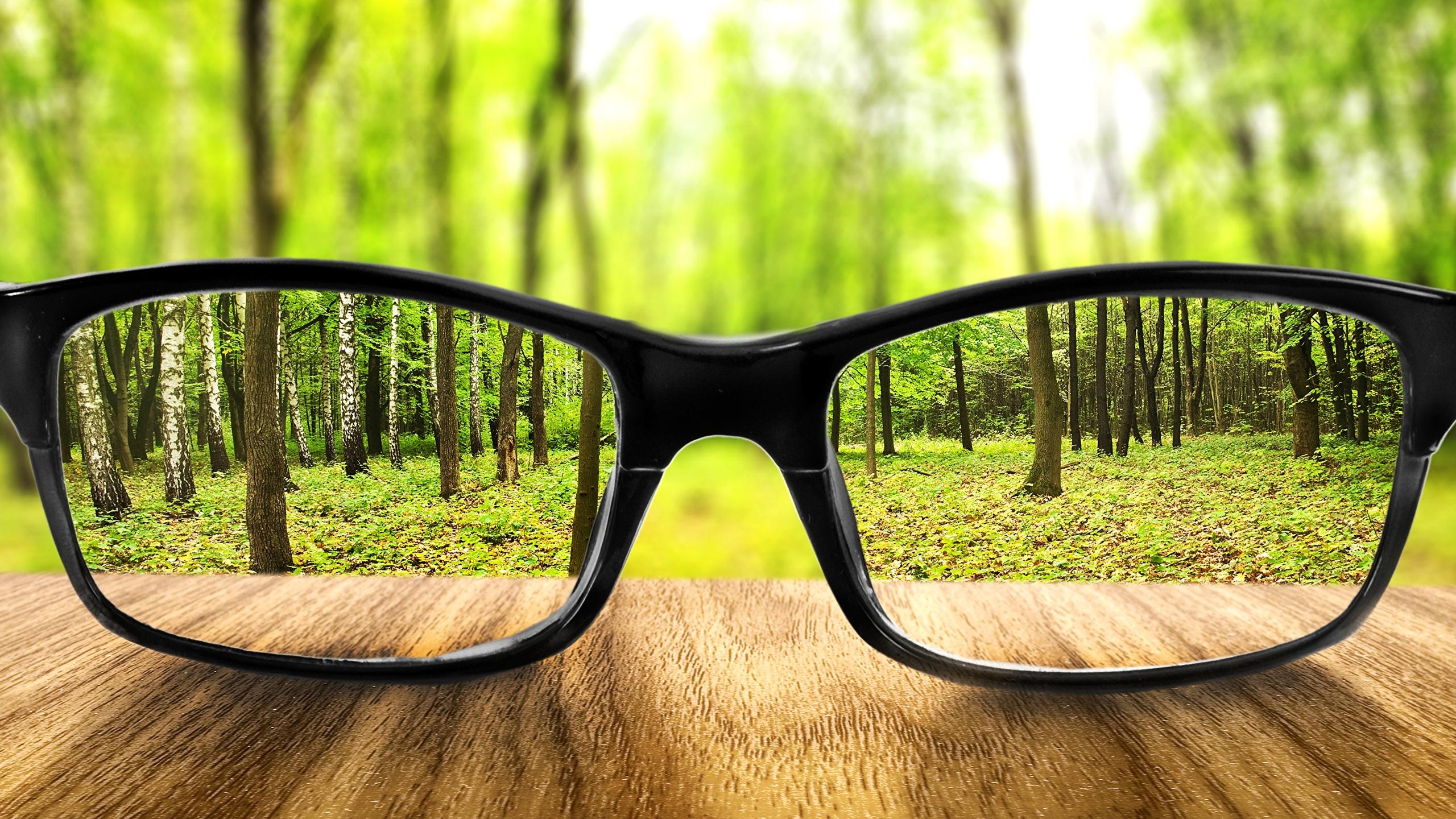 Обои для рабочего стола лес Очки вблизи 2560x1440 Леса очков очках Крупным планом