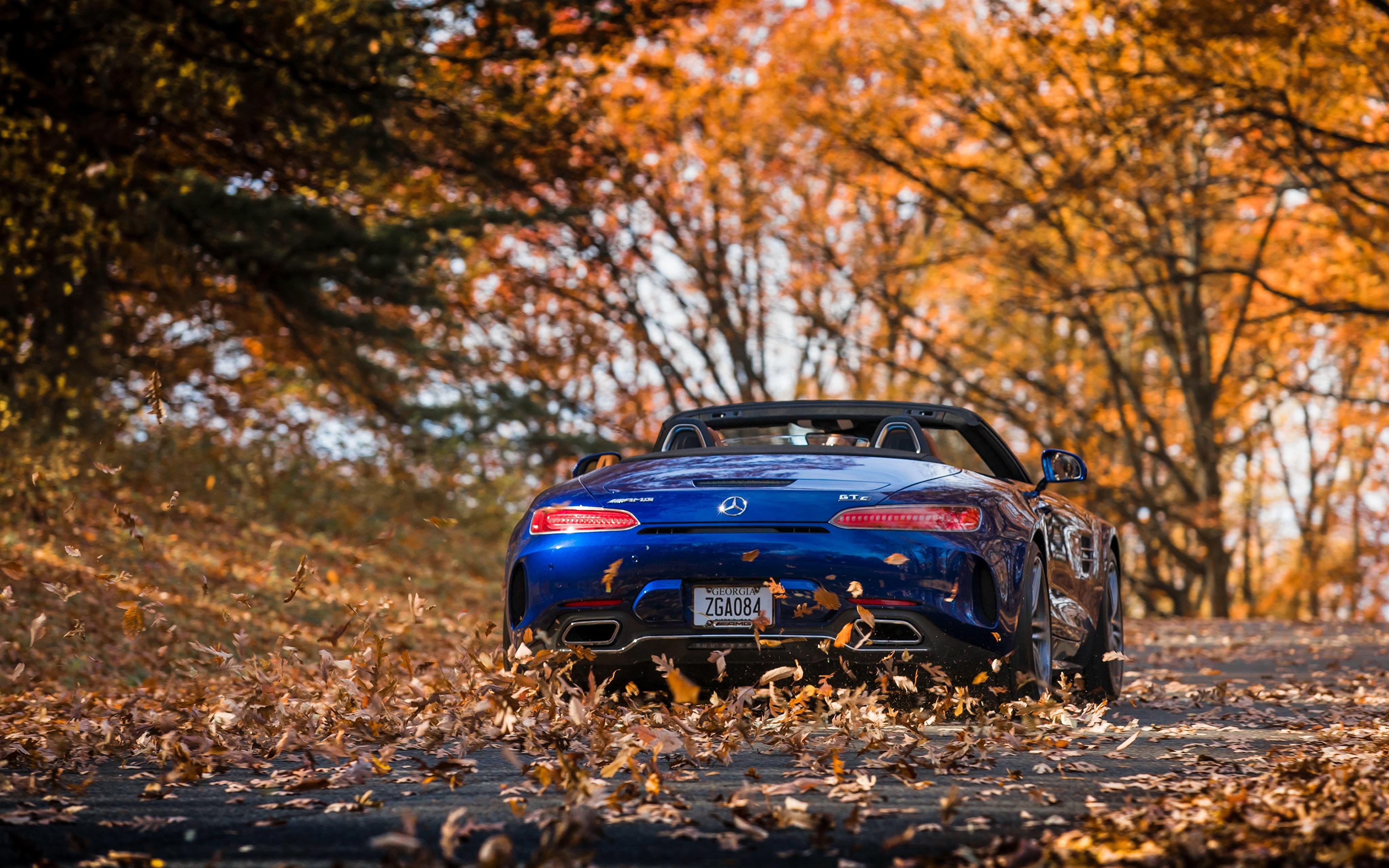 Фото Mercedes-Benz Листья AMG 2018 GT C Родстер синяя вид сзади Автомобили 3840x2400 Мерседес бенц лист Листва синих синие Синий авто Сзади машина машины автомобиль