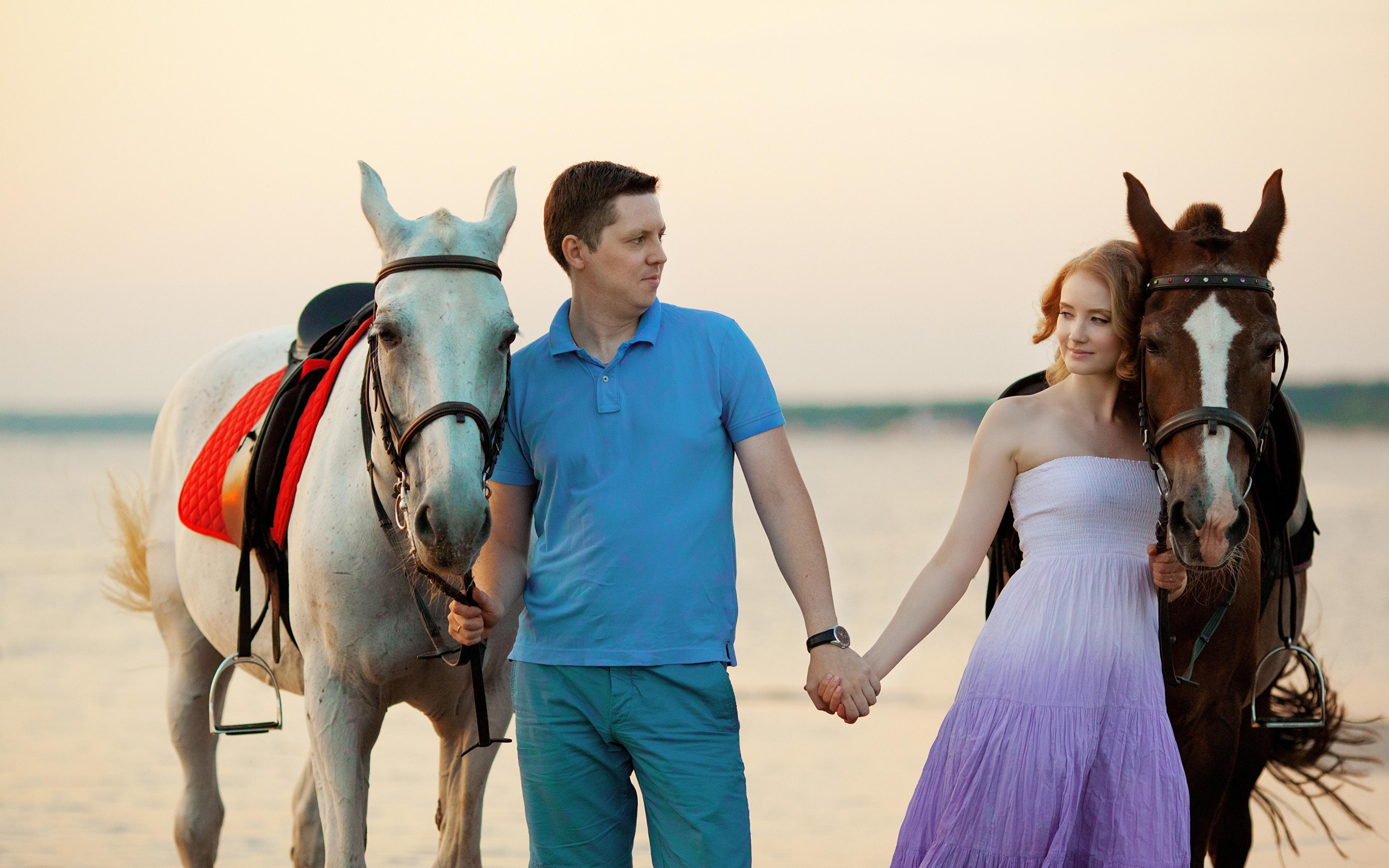 Лошади пара у моря скачать
