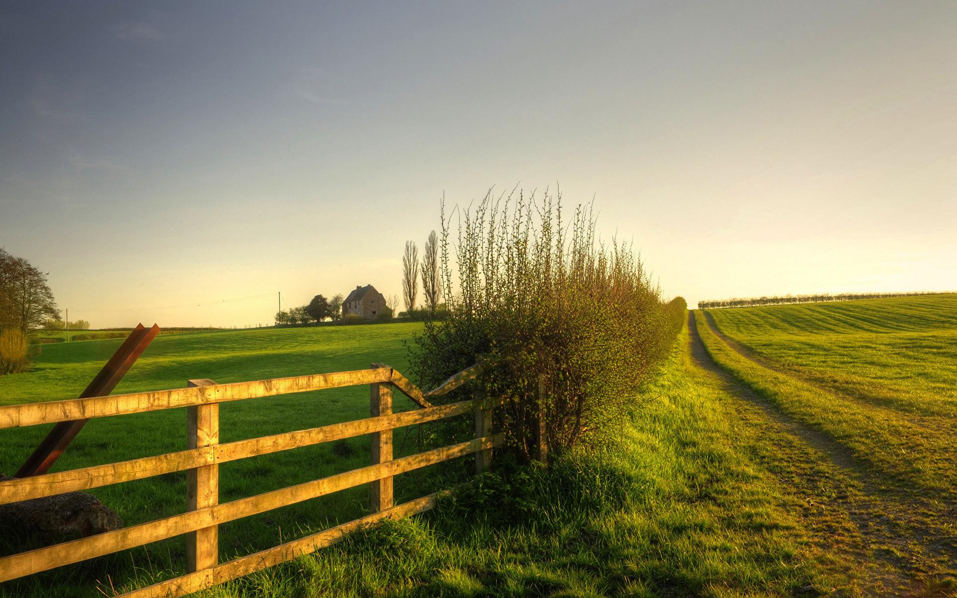 дорога забор кусты road the fence bushes скачать