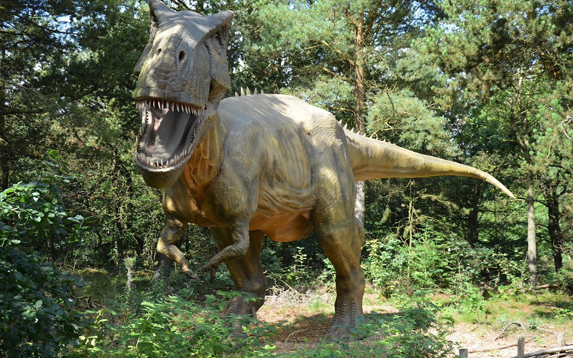 Фотография Тираннозавр рекс динозавр рычит Скульптуры 1920x1200 Динозавры злой Оскал злость скульптура