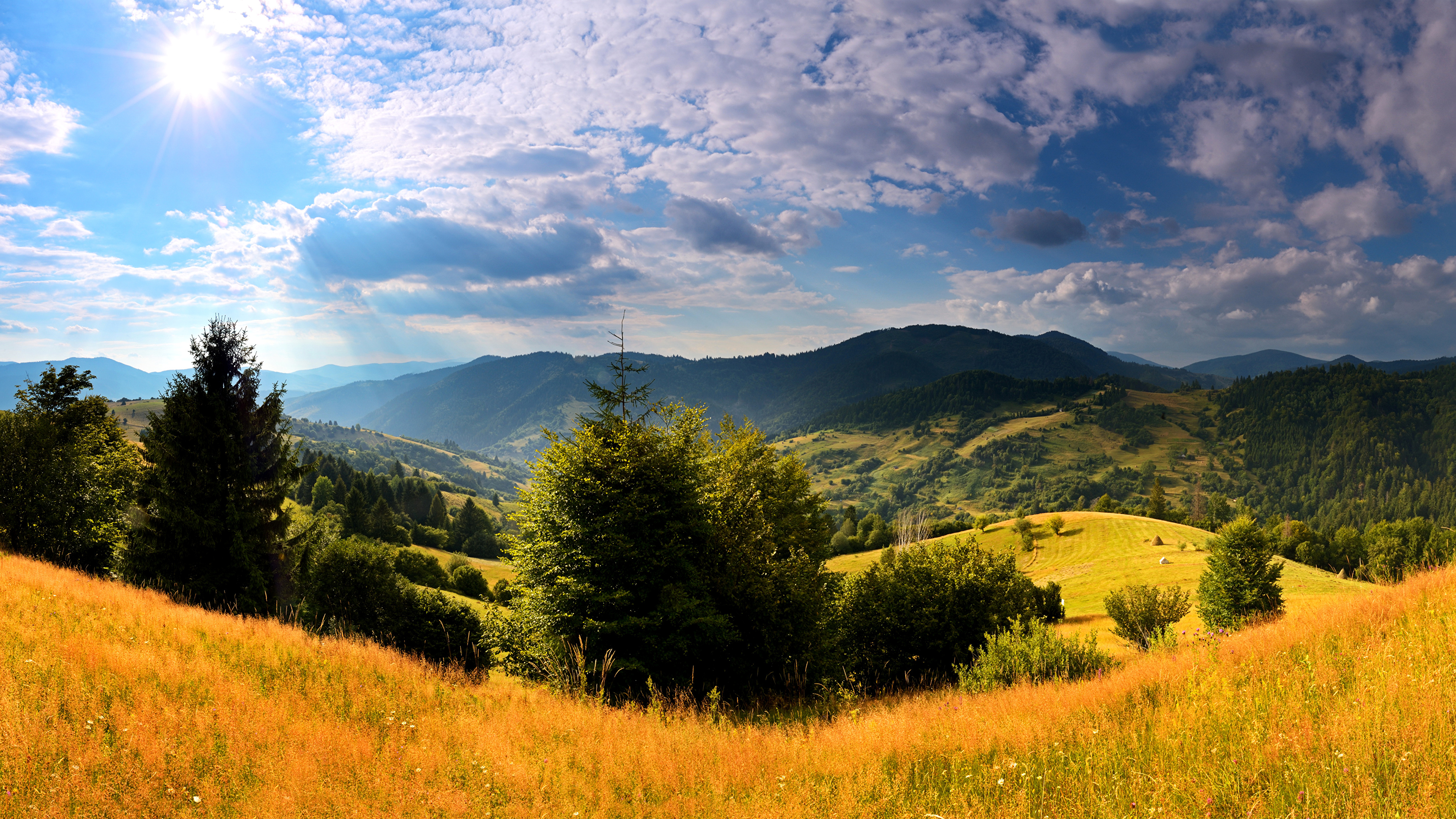 Картинка Карпаты Украина Ель Горы Природа Пейзаж Трава Облака 3840x2160 ели гора траве облако облачно