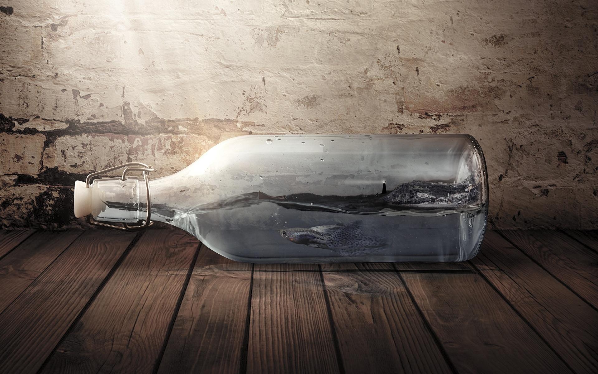 Фото Рыбы оригинальные бутылки 1920x1200 Креатив креативные Бутылка