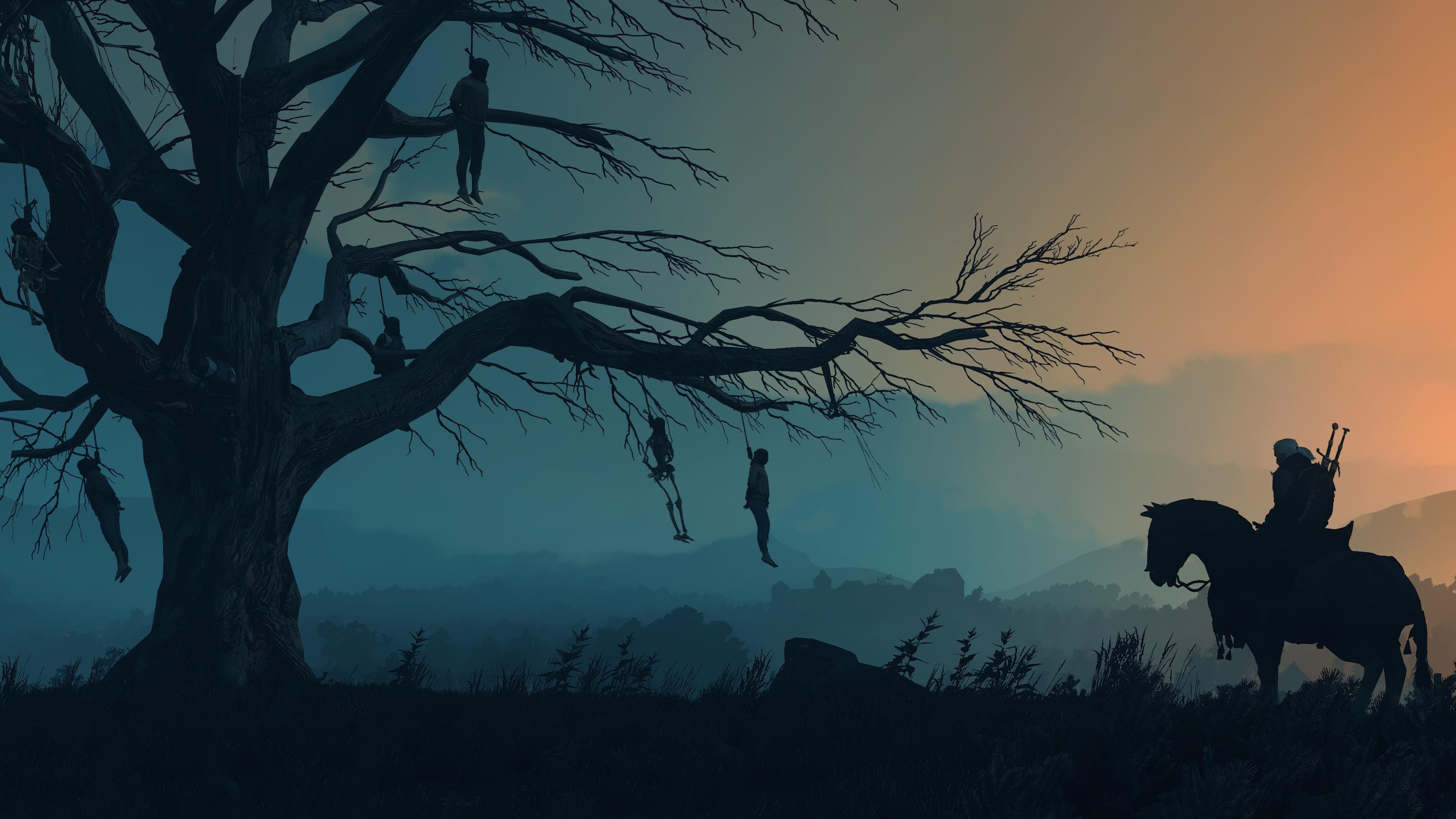 Фотография Ведьмак 3: Дикая Охота Лошади Силуэт Игры Вечер на ветке дерева 3840x2160 The Witcher 3: Wild Hunt силуэты силуэта Ветки ветка ветвь дерево Деревья деревьев