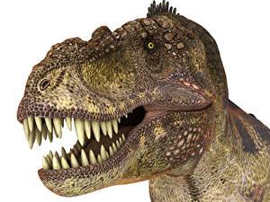 Обои Древние животные Динозавры Тираннозавр рекс Зубы Головы staring 3D_Графика