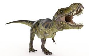 Обои Древние животные Динозавры Тираннозавр рекс Оскал Зубы Green животное 3D_Графика