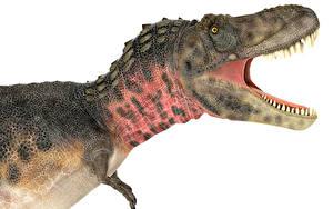 Обои Древние животные Динозавры Зубы Tarbosaurus side view 3D_Графика