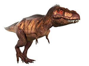 Фото Древние животные Динозавры Тираннозавр рекс 3D_Графика