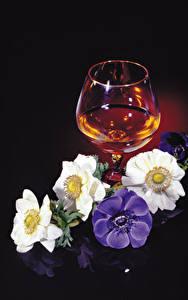 Картинки Ветреница Алкогольные напитки Черный фон Бокалы цветок Еда