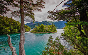 Фотография Аргентина Горы Остров Залива Дерева Chubut Patagonia