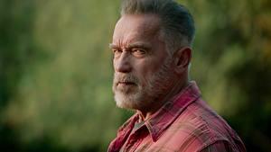Фото Арнольд Шварценеггер Старая Бородой Смотрит Головы Terminator: Dark Fate кино Знаменитости