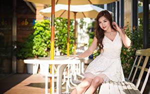 Фотографии Азиаты Скамья Шатенки Платье Руки Сидит молодая женщина