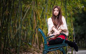 Обои Азиаты Скамейка Сидит Руки Взгляд Боке Шатенки Девушки