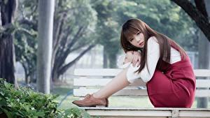 Фото Азиатки Боке Скамья Шатенка Сидящие молодая женщина
