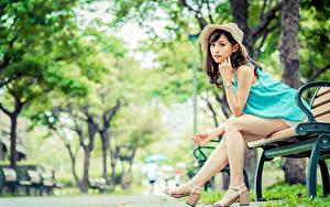 Фотография Азиатка Боке Скамейка Сидя Ноги Шляпы Шатенка Взгляд молодая женщина