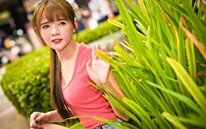 Картинка Азиатки Боке Шатенка Смотрит Кусты Руки девушка