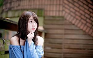 Картинка Азиатки Размытый фон Шатенка Руки Смотрит молодые женщины