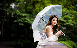 Картинка Азиатки Боке Шатенки Зонтик Взгляд молодые женщины