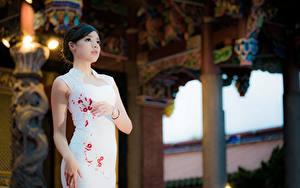 Фотография Азиатки Боке Брюнетки Платья Руки молодые женщины