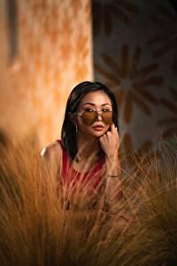 Картинка Азиаты Боке Брюнетки Очках Смотрит Руки молодые женщины