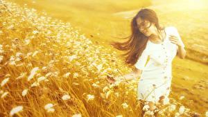 Фотография Азиатки Боке Трава Платье Шатенки молодая женщина