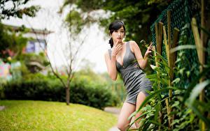 Фотографии Азиатки Боке Поза Платья Вырез на платье Рука Взгляд Девушки