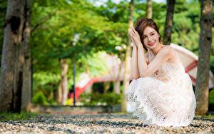 Фотографии Азиатки Боке Позирует Платья Рука Шатенки Сидящие