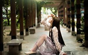 Фотография Азиатка Размытый фон Сбоку Шатенки Сидит Рука Ноги молодые женщины