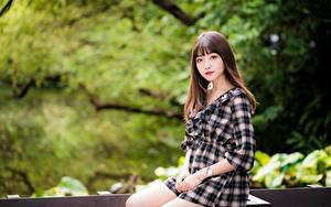 Картинки Азиатки Боке Сидящие Платья Шатенки Миленькие Смотрит девушка