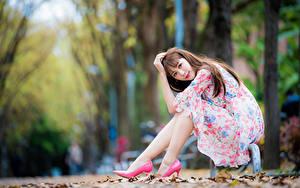 Фотографии Азиатки Размытый фон Сидящие Платья Шатенки Смотрит Позирует Красивая Девушки