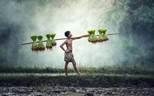 Картинки Азиатка Мальчишка Тумане Поза Работают ребёнок