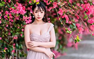 Картинка Азиатки Ветки Рука Взгляд молодая женщина
