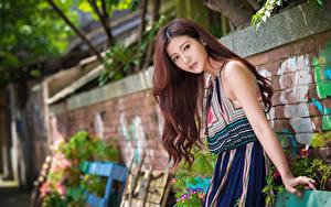 Картинка Азиатки Шатенки Платье Взгляд Рука Размытый фон молодая женщина