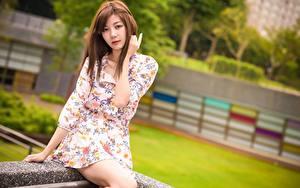 Фотографии Азиатки Шатенки Смотрят Рука Платья Сидящие молодые женщины
