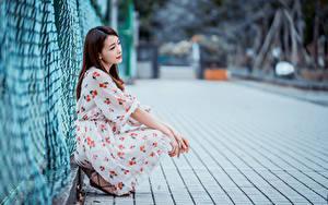 Фотография Азиатка Шатенки Сидя Платья Размытый фон Забора молодая женщина