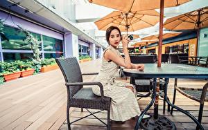 Картинки Азиатка Кафе Сидя Платья Взгляд молодая женщина