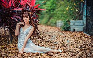 Картинка Азиатка Платье Листья Сидящие Смотрят Девушки