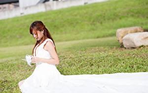 Картинки Азиаты Платье Траве Сидя Шатенка Невесты молодые женщины