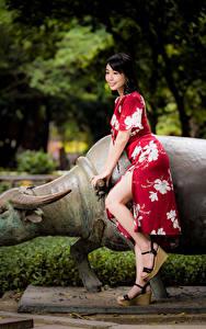 Фотография Азиаты Платья Ног Улыбка молодые женщины
