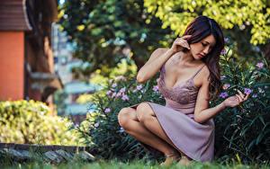 Фотография Азиатки Платье Поза Сидя Размытый фон