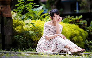 Картинка Азиаты Платье Сидя Смотрят Размытый фон