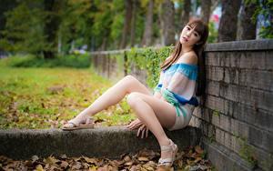 Картинки Азиаты Забор Листья Шатенка Сидит Ноги девушка